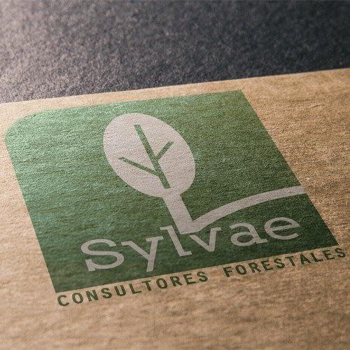 Diseño de logotipo para empresa Sylvae